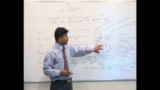 All about Eukaryotic cell (By Dr U.C. Pachouri) Hindi