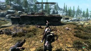 Skyrim (with mods) on GTX 670 + i5 2500k + 8GB RAM
