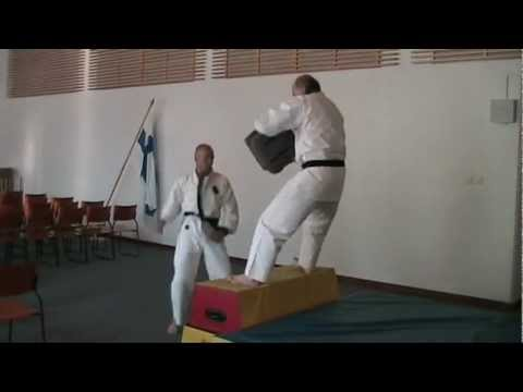 Jumping kicks & punches action. 空手 -demo by Oulun Shukokai karate, Finland Image 1
