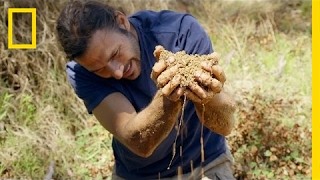 Finding Water in the Desert | Primal Survivor