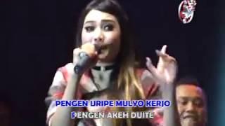 download lagu Nella Kharisma - Stel Kendo  Live Show Jitunada gratis