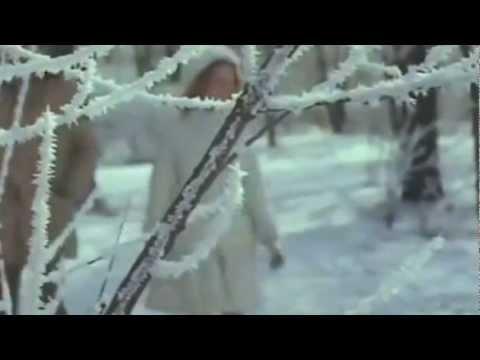 Г. Бойко и Э. Львовская - Ты моя снегурочка