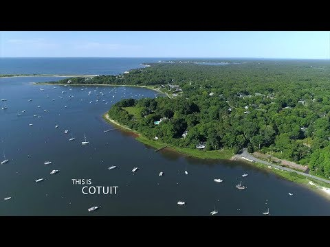 This is Cotuit