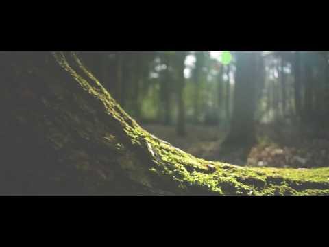 ALEX IMAN - Не жаль (видео)