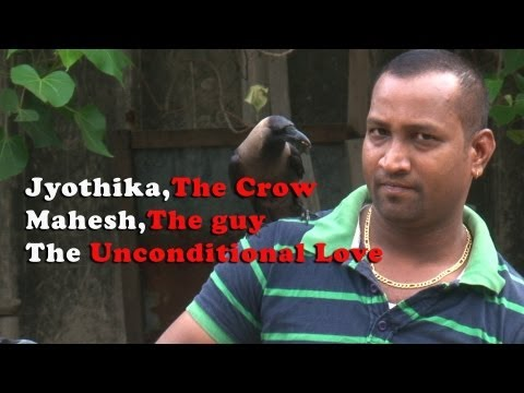 Jyothika The Crow, Mahesh The Guy,  The Unconditional Love[red Pix] video