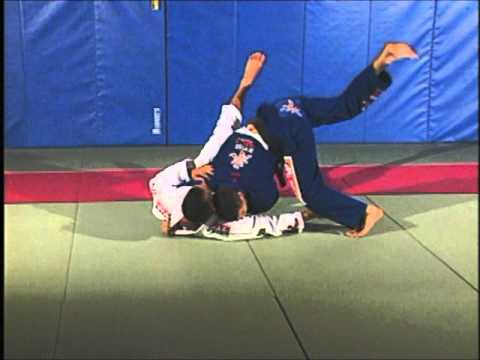 Leo Vieira BJJ - Butterfly guard pass Image 1
