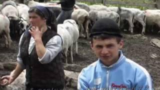 robert tarnaveanu  - draga sfanta marie