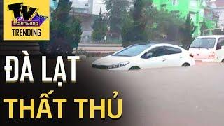 Đà Lạt 'CHÌM' trong biển nước xe cộ nổi lềnh bềnh sau loạt mưa lớn kéo dài