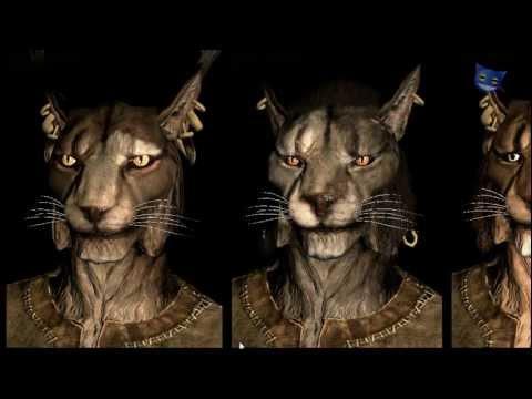 Skyrim Name Of Cat Race