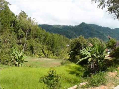 Pangala, Tana Toraja