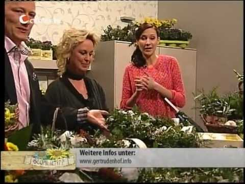 osterkranz basteln das gertrudenhof blumentipp special bei center tv zu ostern youtube. Black Bedroom Furniture Sets. Home Design Ideas