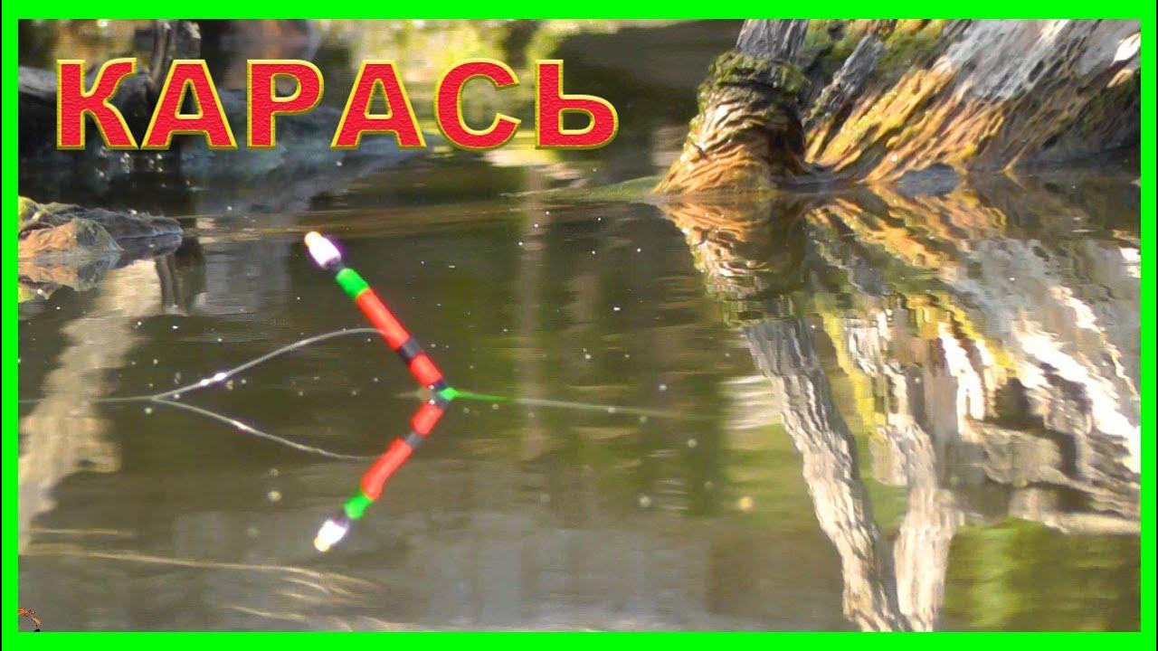 видео рыбалка на поплавок на озере