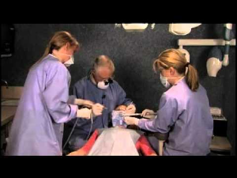 4 6 handed dentistry essays