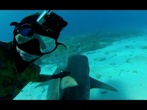 GoPro:  Shark Riders - TV Commercial - You in HD
