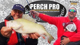 Perch Pro 2018 - EPISODE 6 - with French, German & Russian subtitles