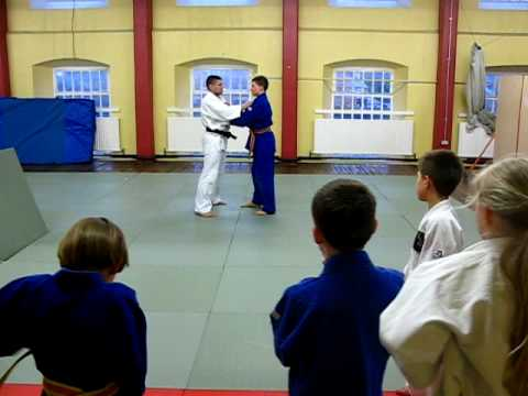 Judo Ireland. Kids' judo class in