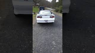 Texas Speed Bald Eagle Cam