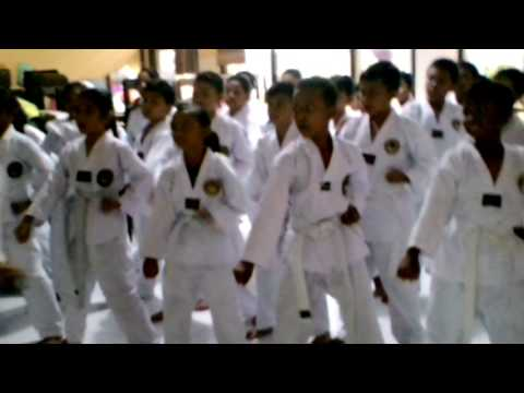 Taekwondo SDN 41 Mataram