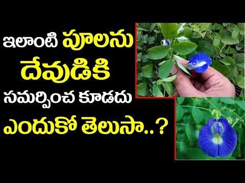 ఇలాంటి పూలను దేవుడికి సమర్పించ కూడదు ఎందుకో తెలుసా..? || Pooja Vidhanam With Flowers || SumanTv