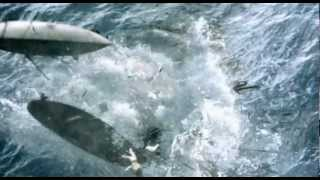 Moby Dick (2010) Trailer