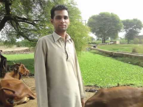 ghoonghat mein chand hoga Waqas