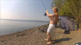 world carp classic biggest fish (manfish)