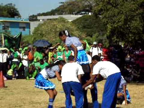 ardenne high sports cheerleading 1st plce- cohen (jamaica)