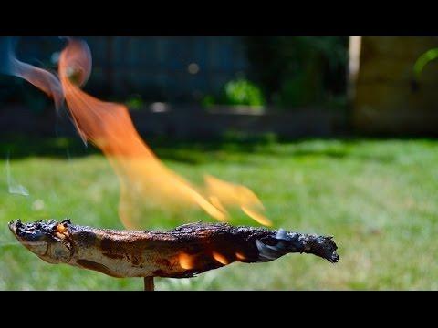 ловля окуня на свечу зажигания