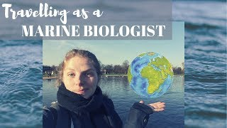 Travelling as a marine biologist | Why and how?
