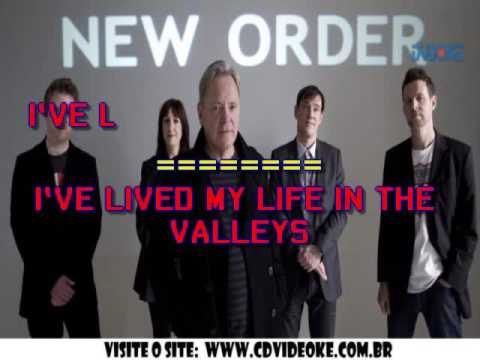 New Order   Thieves Like Us
