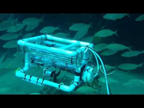 Scuba diving robot at Playa Chica, Puerto Del Carmen