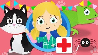 Sarah The Cat Visits Dr Poppy's Pet Rescue   Animals For Kids