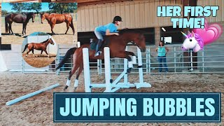 BUBBLES' FIRST TIME JUMPING // barn vlog #12