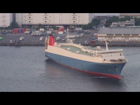 Tokyo Bay and Port View from Telecom Center in Odaiba (お台場テレコムセンターからの東京湾と港の眺め)