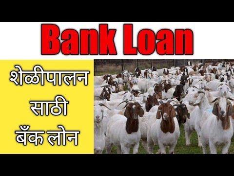शेळीपालनासाठी बँक लोन || Bank Loan or Schemes for Goat Farming