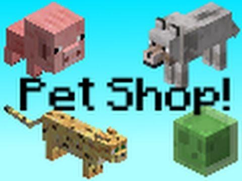 Minecraft Pet Plugin