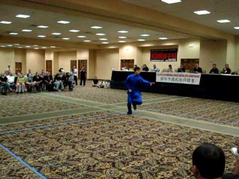 kung fu tournament 2009--masters demo xingyi Image 1
