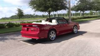 ord dealership tampa ford dealership near me. Cars Review. Best American Auto & Cars Review