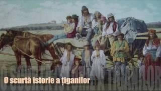 O scurta istorie a tiganilor