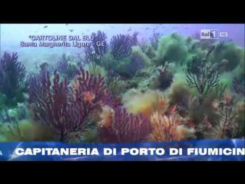 Cartoline dal Blu'-Santa margherita Ligure. Sigla finale della puntata di Linea Blu' Rai 1 del 11/10/2014 BY Gian Melchiori