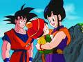 Goku Chi Chi Tribute - DBZ AMV