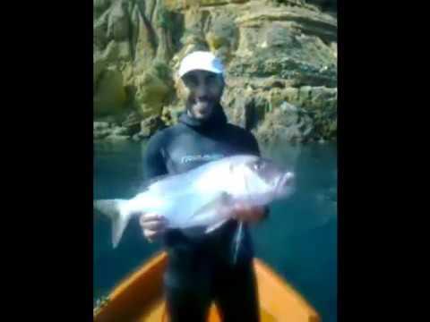 chasse sous marine 2 algeria