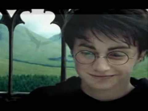 Harry and Ginny - Run Music Videos