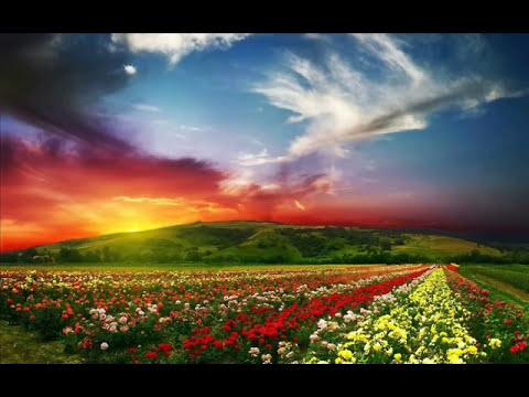 seçkin ilahiler(YENİİİ 2014) İYİ DİNLEMELER (RESULE SEVDALI )(sinan çiftçi)