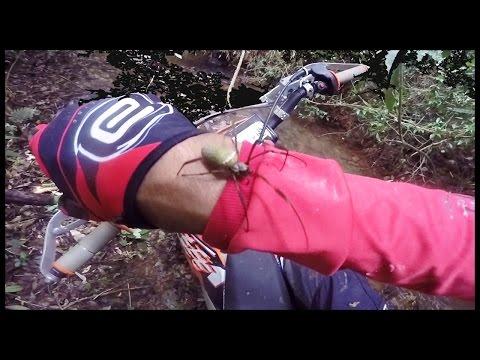 🏁  Enroscando na Aranha no Meio da Trilha   Rio de Pedras TOP   KTM 250 EXC  🏁