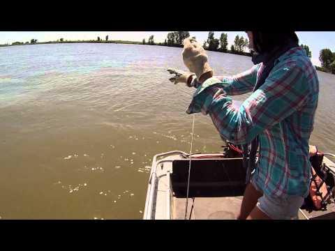рыбалка в житном