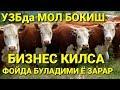 МОЛ БОКИШ ФОЙДА ЁКИ ЗАРАР mp3