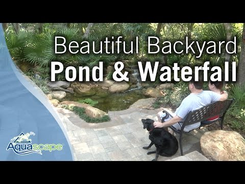 Beautiful Backyard Pond & Waterfall