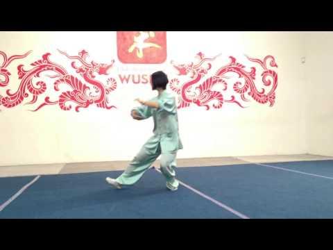 Forma básica de taiji de 10 movimientos