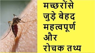 मच्छरों से जुड़े बेहद महत्वपूर्ण और रोचक तथ्य